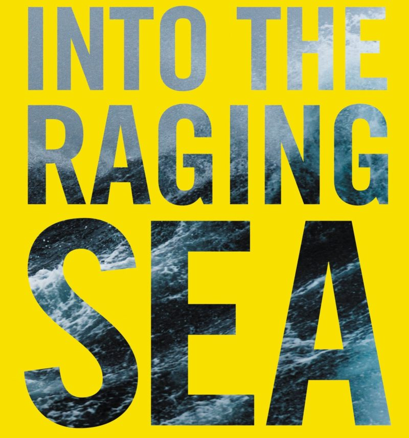 Into the Raging Sea book