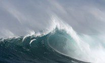 Rogue Wave Photo