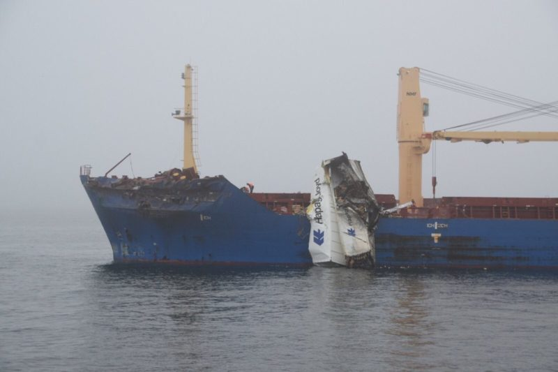 Incident Photos: Containership and Bulk Carrier Collide in