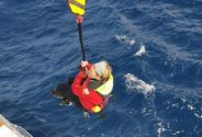 British Golden Globe Yachtswoman Rescued by Cargo Ship in South Pacific