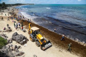 Brazilian army soldiers and residents work to remove an oil spill on Itapuama Beach in Cabo de Santo Agostinho